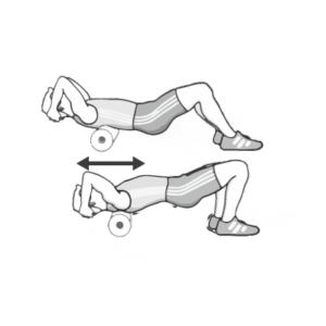 Bovenrugspieren
